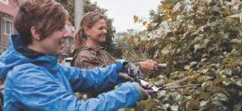 12 Oktober – Tuinklus en Opschoondag Kruidenbuurt