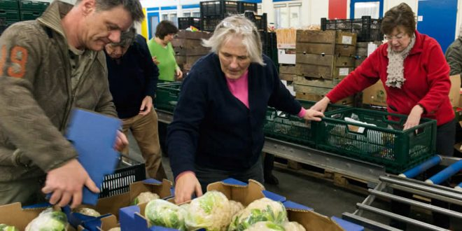 De voedselbank helpt! Help de voedselbank en wordt vrijwilliger!