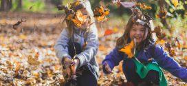 Tal van leuke activiteiten tijdens herfstvakantie in Malburgen