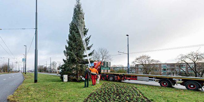 Hij staat weer…de kerstboom!