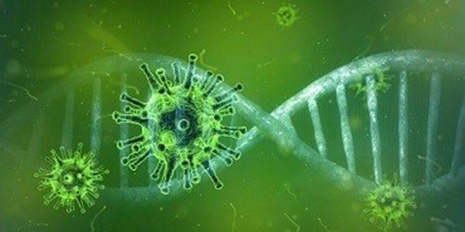 Coronavirus – zwerfafval opruimen? Houd dan rekening met…